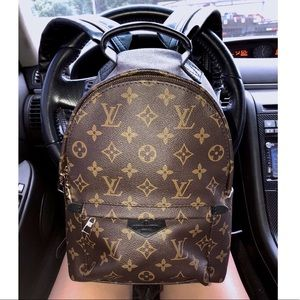 LV Palm Springs Backpack 🎒